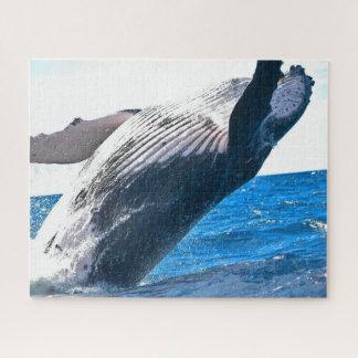 Quebra-cabeça majestoso da baleia (520 partes)