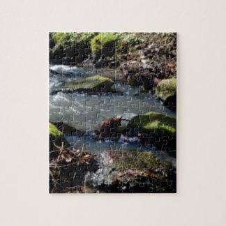 Quebra-cabeça musgo em The Creek