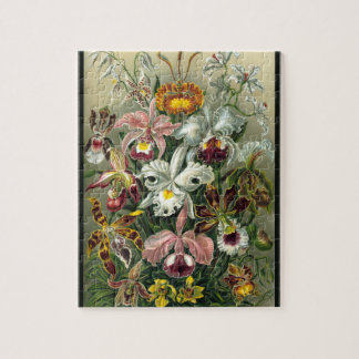 Quebra-cabeça Orchidea - Ernst Haeckel 8x10