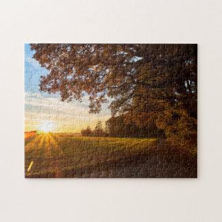 Quebra-cabeça Paisagem carvalhal com pôr do sol outono
