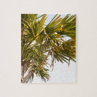 Quebra-cabeça Palmeira da costa leste Myrtle Beach famoso