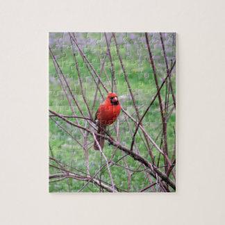 Quebra-cabeça Pássaro cardinal vermelho que senta-se no ramo