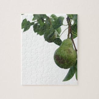 Quebra-cabeça Peras verdes que penduram em uma árvore de pera