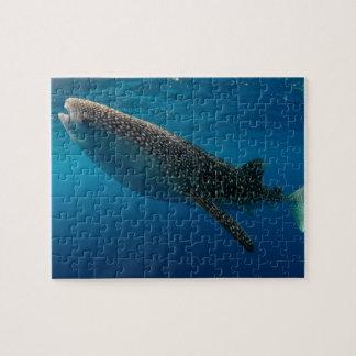 Quebra-cabeça Perfil de um tubarão de baleia, Indonésia