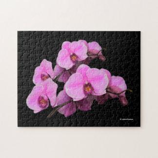 Quebra-cabeça Phalaenopsis cor-de-rosa elegante das orquídeas no