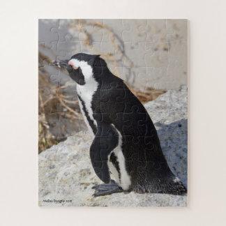 Quebra-cabeça Pinguim Pottering