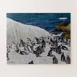 Quebra-cabeça Pinguins na baía dos pedregulhos