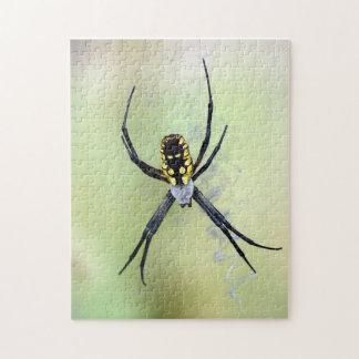 Quebra-cabeça preto & amarelo da aranha de jardim