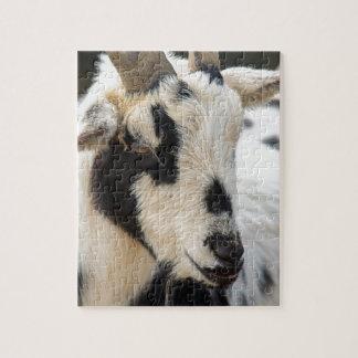 Quebra-cabeça Retrato da cabra