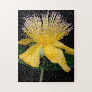 Quebra-cabeça Série floral