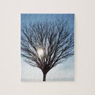 Quebra-cabeça sol do inverno
