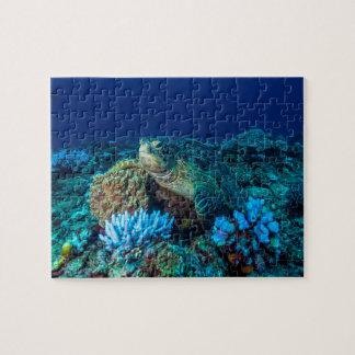 Quebra-cabeça Tartaruga de mar no grande recife de coral