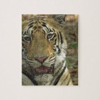 Quebra-cabeça Tigre bonito e sorrindo