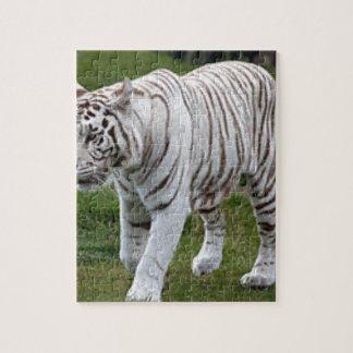 Quebra-cabeça Tigre branco