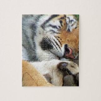 Quebra-cabeça Tigre do sono