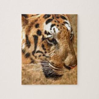 Quebra-cabeça Tigre que desengaça em India