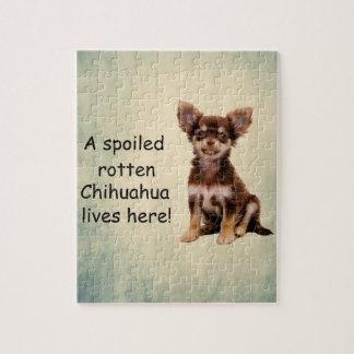Quebra-cabeça Um cão podre estragado da chihuahua vive aqui