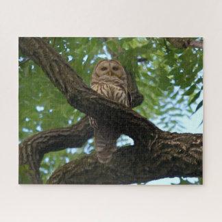 Quebra-cabeça Uma coruja barrada em um ramo nas madeiras