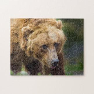 Quebra-cabeça Urso de urso