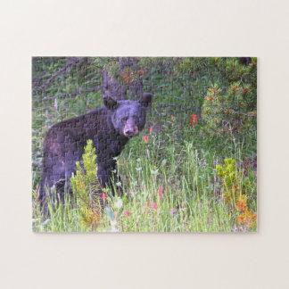 Quebra-cabeça Ursos pretos Canadá