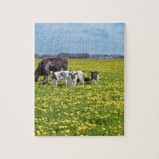 Quebra-cabeça Vaca com as vitelas que pastam no prado com