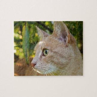 Quebra-cabeça Verde Tawny gato Eyed do gatinho