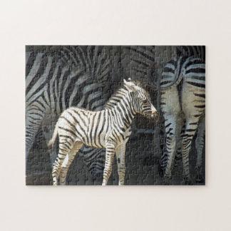 Quebra-cabeça Zebra ensolarada do bebê