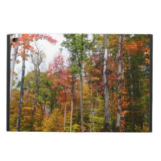 Queda na fotografia colorida do outono da floresta capa para iPad air 2