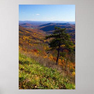 Queda no parque nacional de Shenandoah, Virgínia Poster