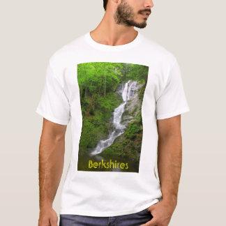 Quedas do ribeiro de Ross da cachoeira de Camiseta