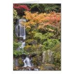 Quedas e cores celestiais do outono cartao
