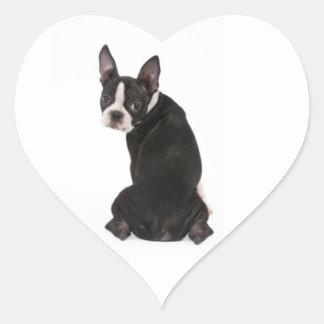 Quem mim etiqueta do cão de Boston Terrier