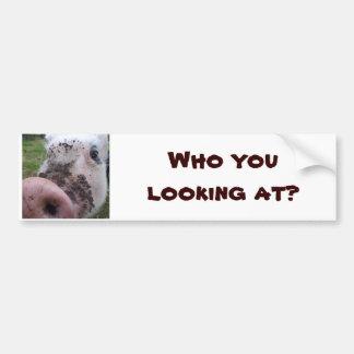 Quem você que olha? Etiqueta do porco Adesivo