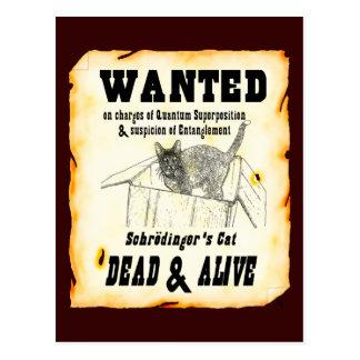QUERIDO: Cartão do gato de Schrodinger