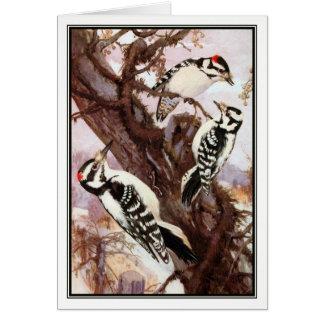 R. Bruce Woodpeckers Downy e peludos de Horsfall - Cartão Comemorativo