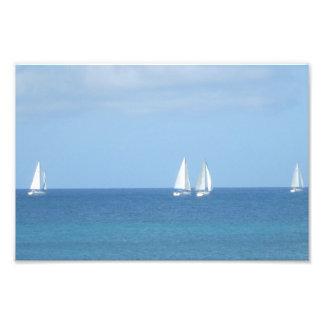 Raça do veleiro impressão de foto