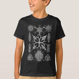 Radiolarians - protozoários amoeboid camiseta