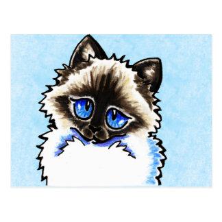 Ragamuffin de Ragdoll ilustrado Cartão Postal