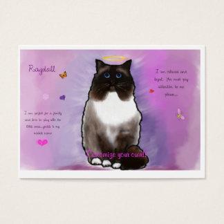 Ragdoll bonito doce cartão de visitas