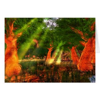 Raios de sol do cartão da poesia da harmonia com