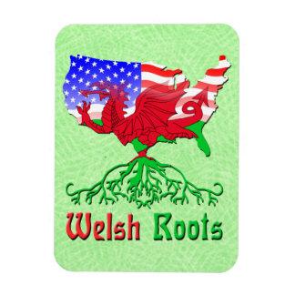 Raizes de Galês, ímã americano de Flexi do mapa