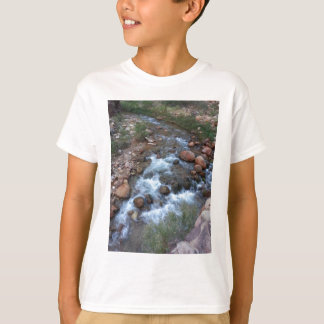 Rancho sul do fantasma do parque nacional do Grand Camiseta