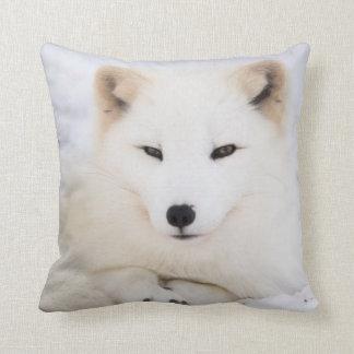 Raposa ártica branca na neve almofada