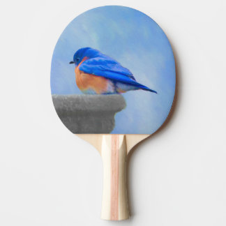 Raquete De Ping-pong Bluebird
