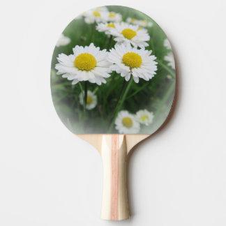 Raquete De Ping Pong flor branca do primavera na grama verde