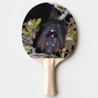 Raquete De Ping-pong Fox de vôo Cinzento-Dirigido
