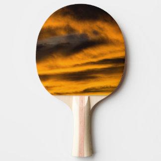 Raquete De Ping-pong neutralização da águia