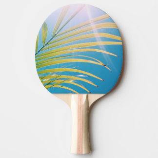 Raquete De Ping Pong Pá ensolarada de Pong do sibilo da palmeira das