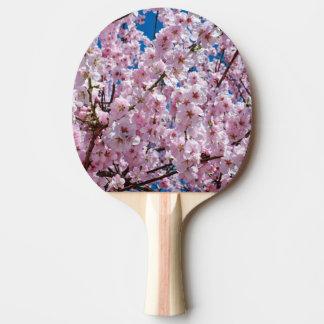 Raquete De Tênis De Mesa fotografia cor-de-rosa elegante da árvore da flor