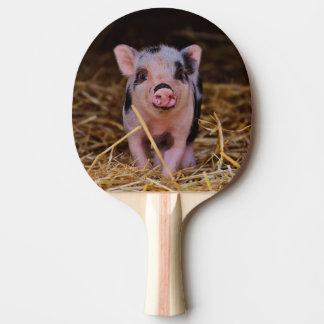 Raquete De Tênis De Mesa mini porco